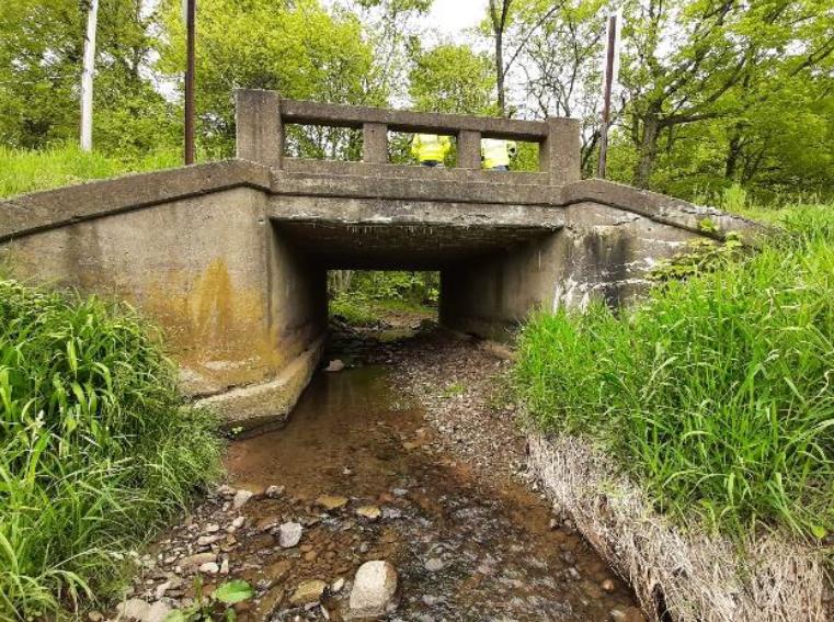 Dalton-Fox Road Bridge Pic